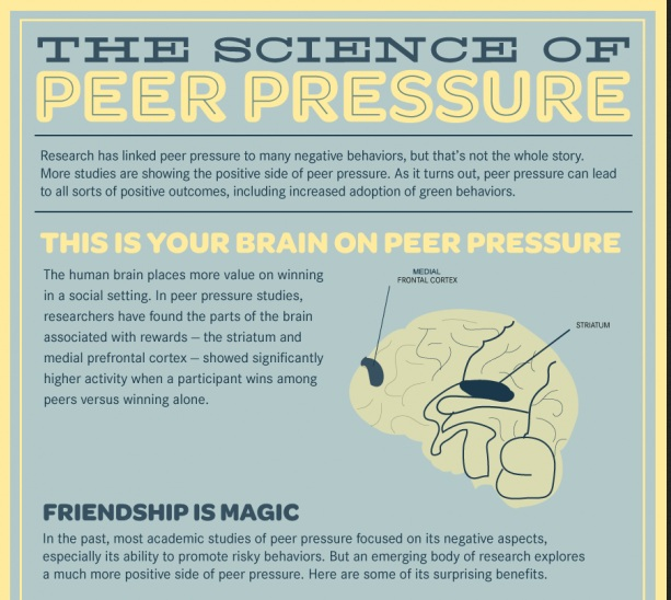causes of peer pressure Peer pressure can cause us to make certain choices about whether to drink alcohol or use drugs, what to wear, who to be friends with, or whether or not to skip school, for example.